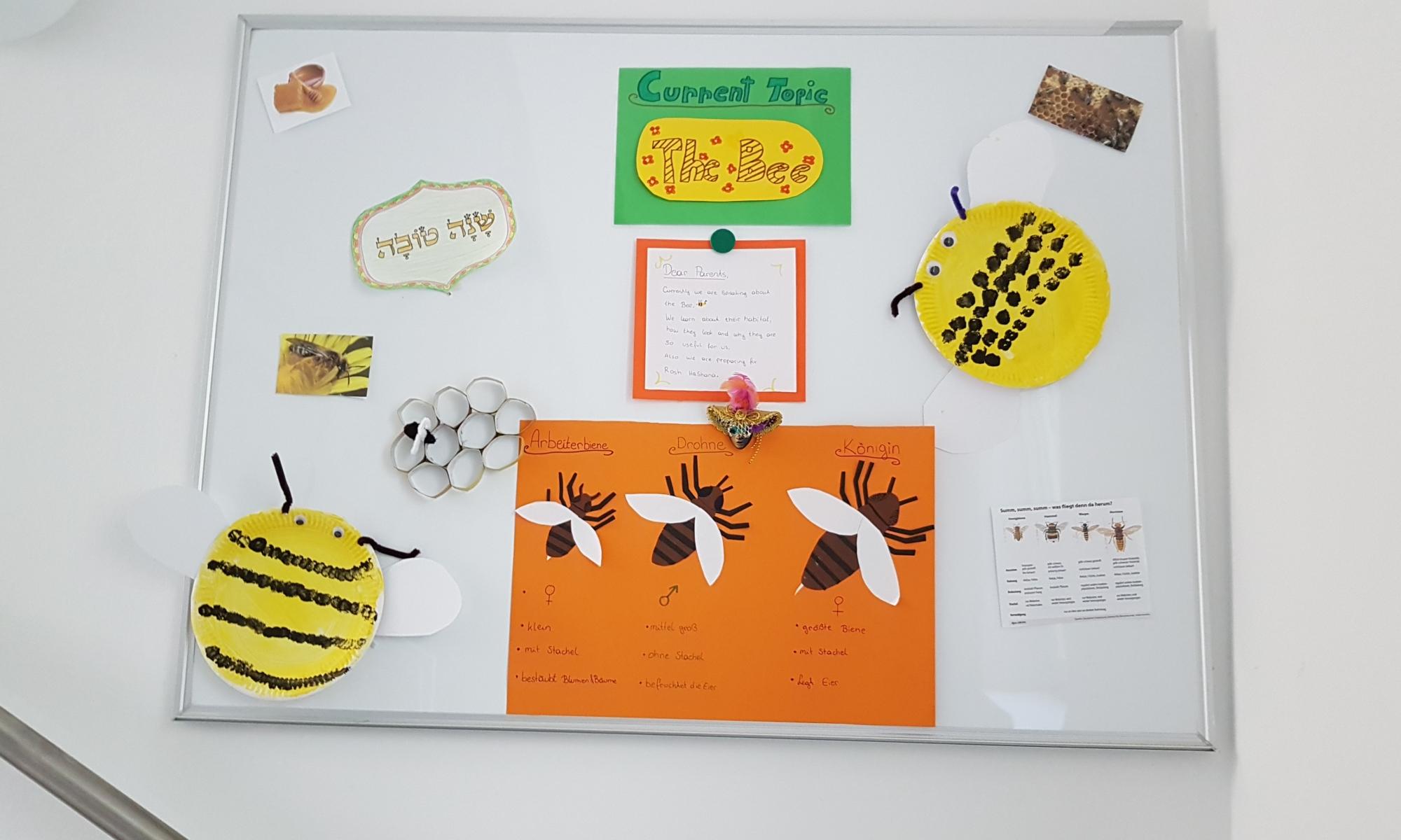 Kunstprojekte im Gan Sara Kindergarten (2)
