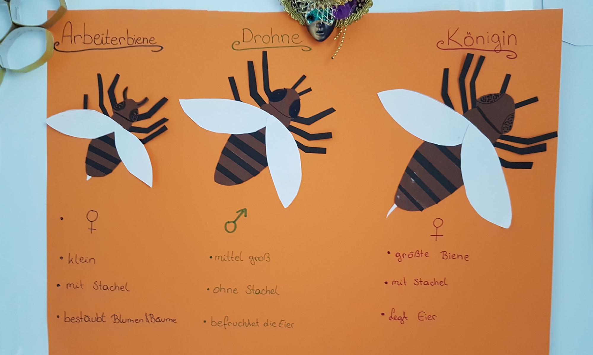 Kunstprojekte im Gan Sara Kindergarten (3)