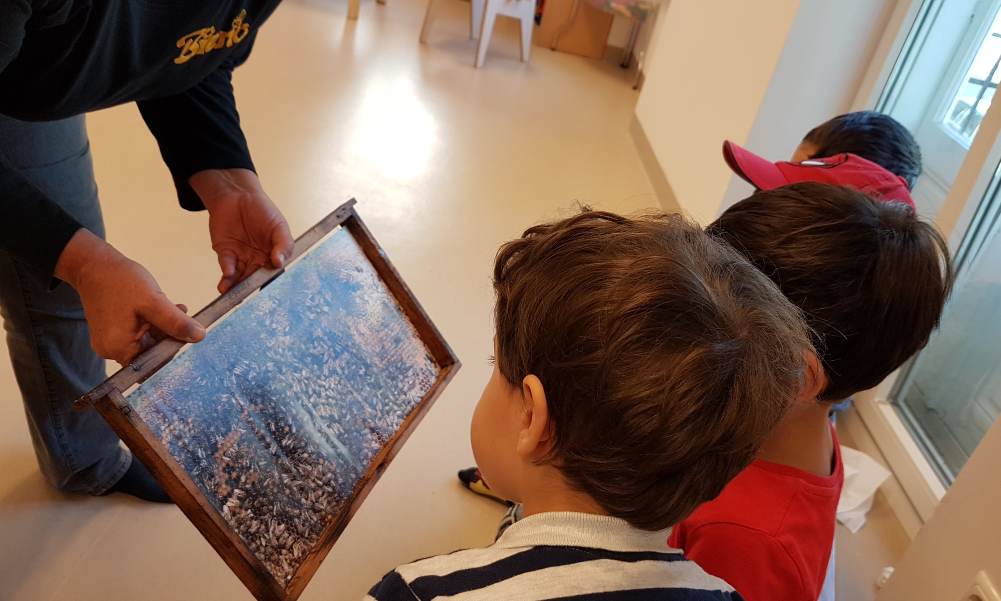 Kunstprojekte im Gan Sara Kindergarten (5)